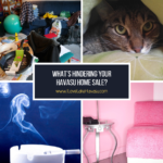 You might be doing things to hinder your Havasu home sale and not even know it. Crazy colors, too many personal items, and stinky smells are just a few issues that turn a buyer off.