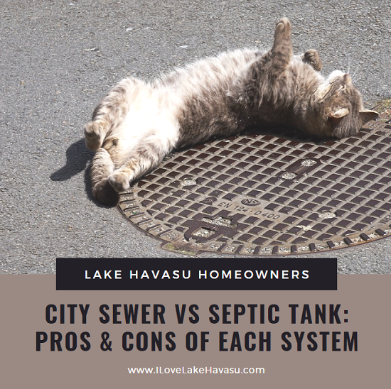 In 2001, Lake Havasu citizens voted to change from a septic tank system to a city-wide sewer system. What are the pros and cons of each?